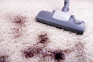 Carpet Cleaning Tips That Will Keep Your Free From Stains And Allergens