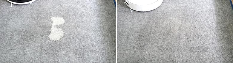 360 S6 cleaning pet litter on low pile carpet