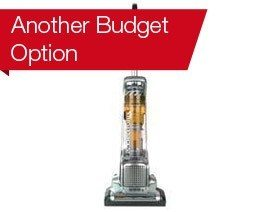 Another Budget Option: Electrolux Precision Brushroll