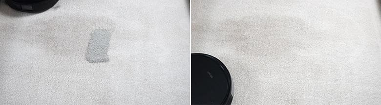 Ecovacs T8 AIVI cleaning pet litter on mid pile carpet