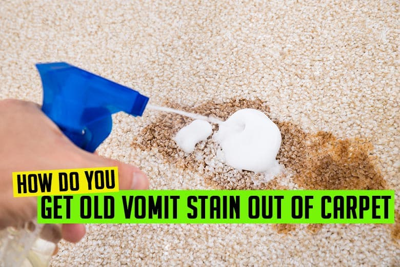 How do you get vomit stains out of carpet