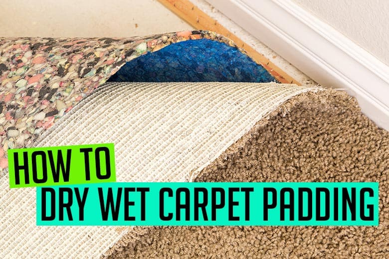 How to Dry Wet Carpet Padding