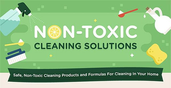 Non Toxic Home Cleaning Solutions Infographic