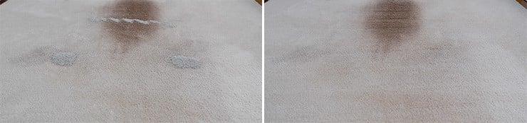 Roborock S5 Max pet litter on mid pile carpet