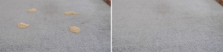 Roborock S5 Max cleaning Quinoa on low pile carpet