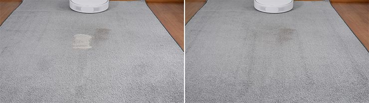 Roborock S6 Pure cleaning pet litter on low pile carpet