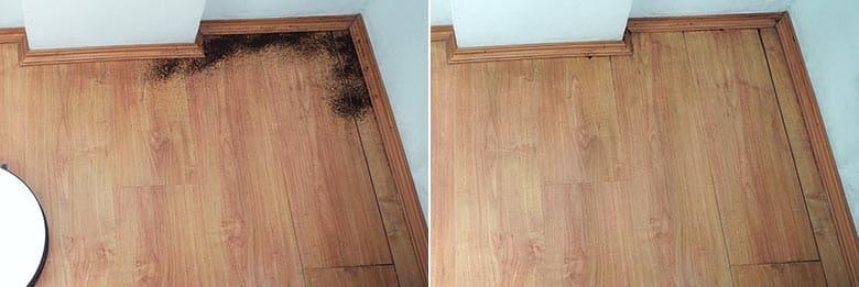 Yeedi K650 edge cleaning